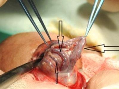 Операция Мармара фото