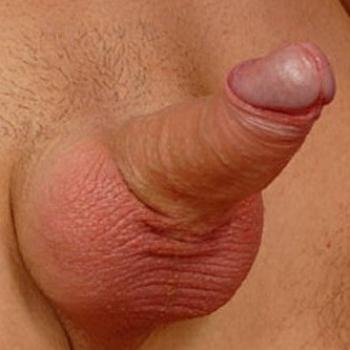 Фото полового члена с маленькой, тонкой головкой